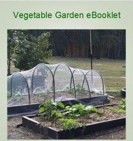 Vegetable Garden ebooklet