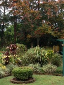 garden design brisbane