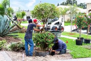 Trade Landscapers